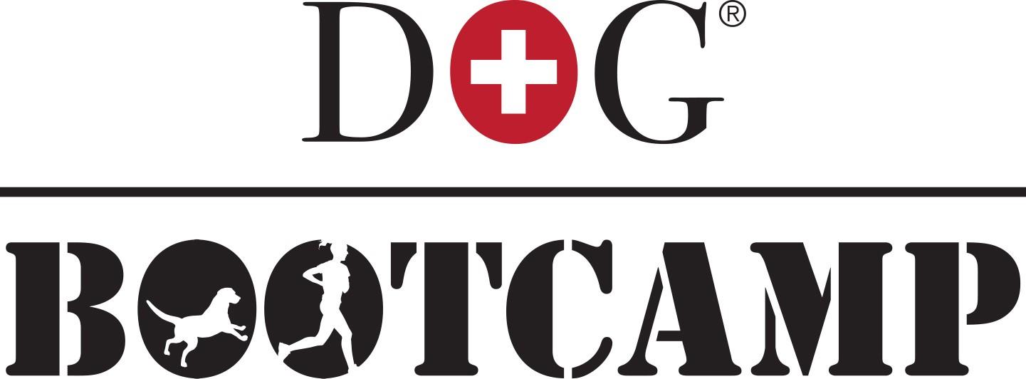 Dog Bootcamp EASY: Einzelbuchungen